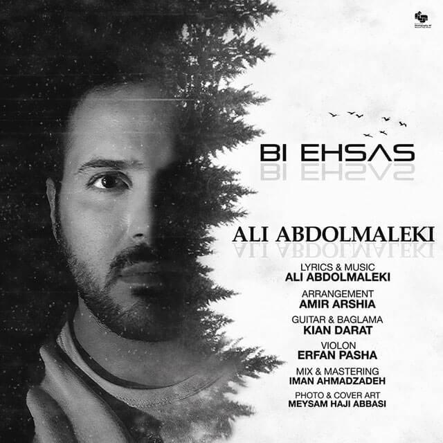 دانلود آهنگ علی عبدالمالکی بی احساس + متن ترانه