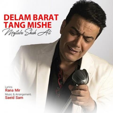 دانلود آهنگ جدید مجتبی شاه علی به نام دلم برات تنگ میشه