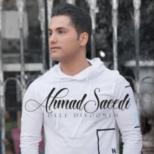 دانلود آهنگ احمد سعیدی دل دیوونه + متن ترانه