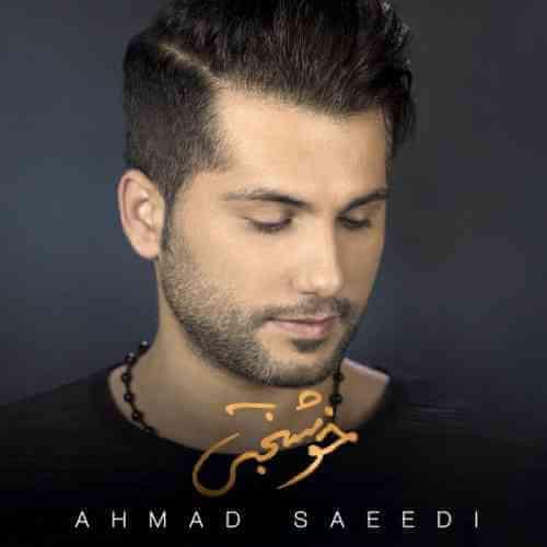 دانلود آهنگ احمد سعیدی خوشبختی + متن ترانه